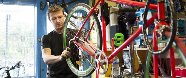 Vladimir Mechanic